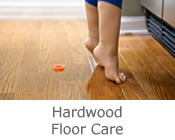 Carson City Hardwood Cleaning - Summit Cleaning Services of Carson City - North Lake Tahoe Hardwood Cleaning, Reno Hardwood Cleaning, Minden Hardwood Cleaning, Gardnerville Hardwood Cleaning